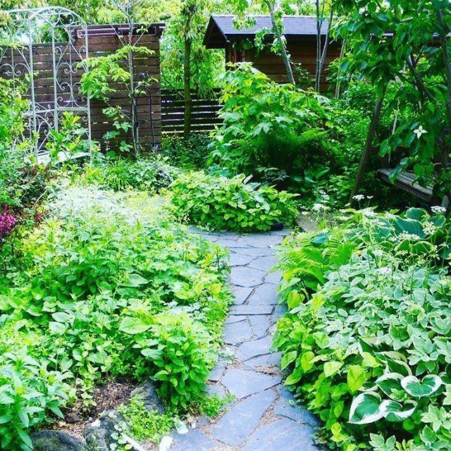 باغچه ویلا