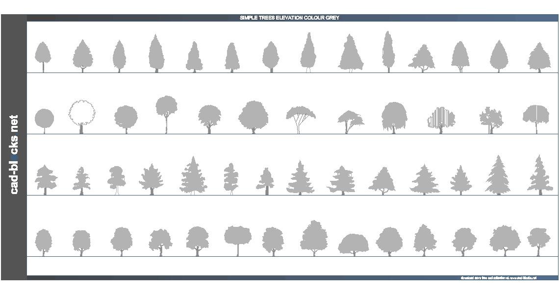 دانلود شماتیک درختان
